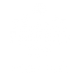 voluntariados-icono blanco Ymca cali